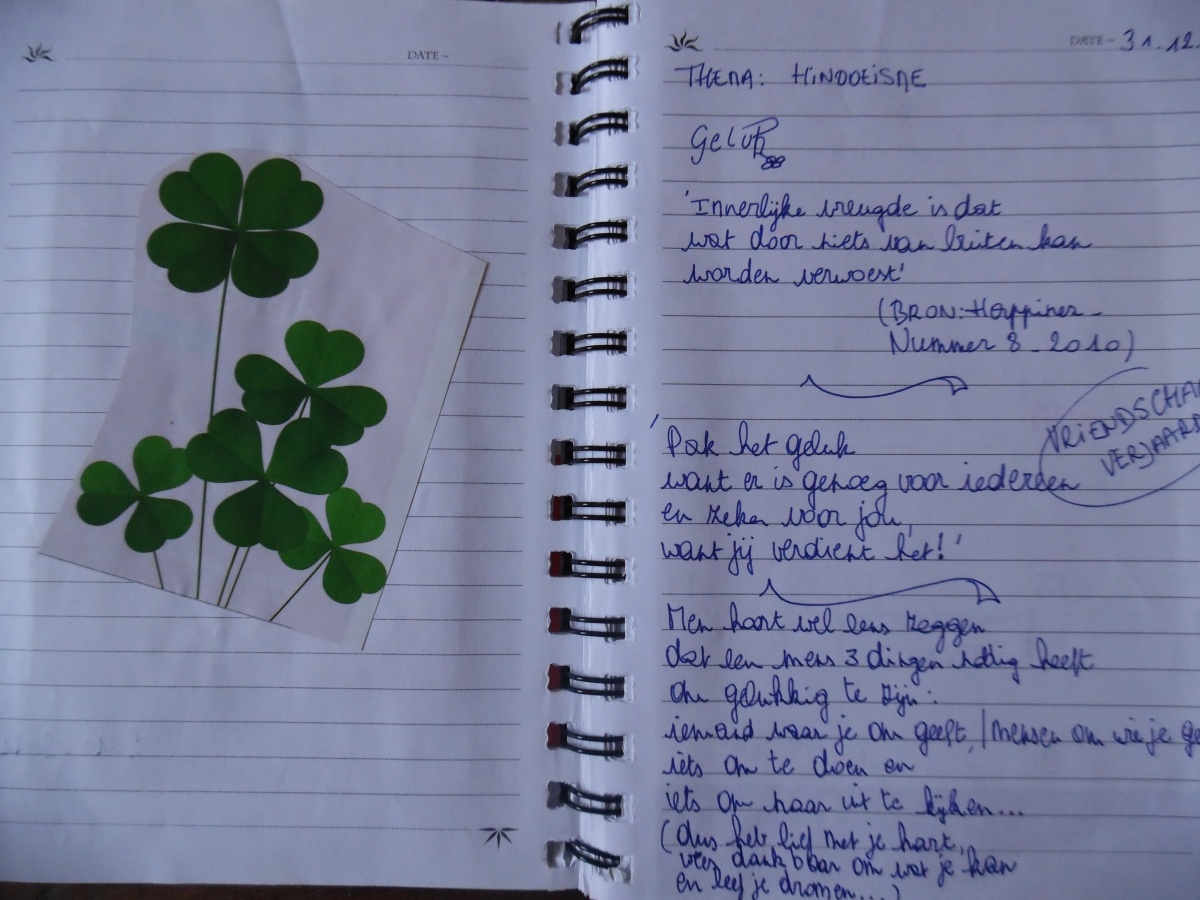 Waarom vandaag alles groen mag zien - St. Patrick's day