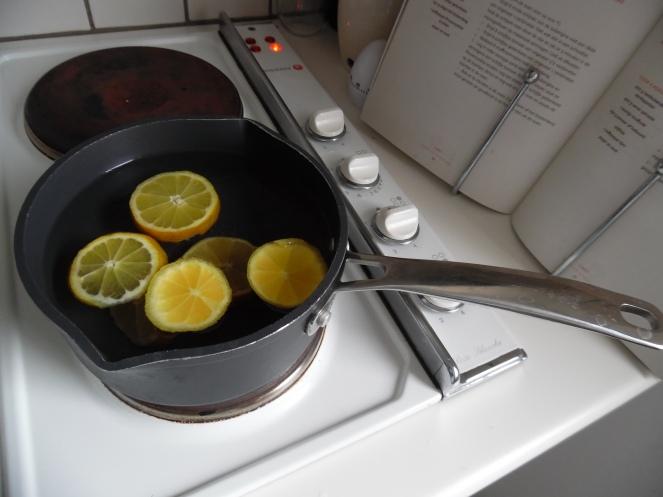 citroen als geurneutralisator